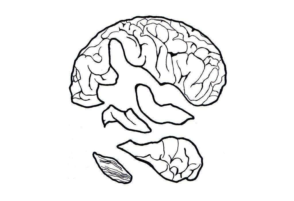 Vectorised illustration for screenprint